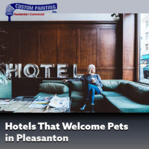 Hotels That Welcome Pets in Pleasanton